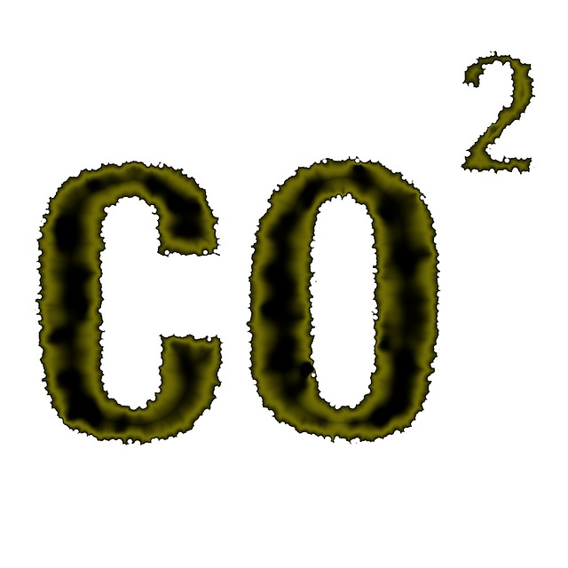 CO2 y la huella de carbono